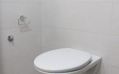 WC japonais : pourquoi et combien ?